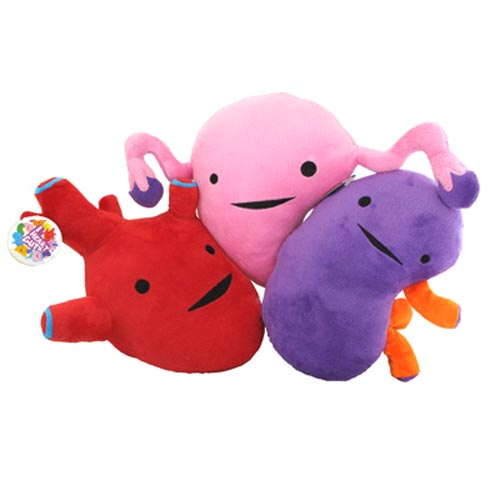 I Heart Guts - Kidney, Heart & Uterus