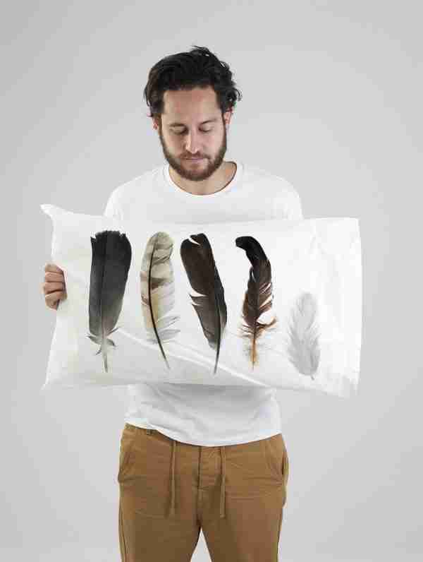 Feather Collection Pillow Set by Club of Odd Volumes
