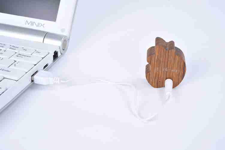 MOTZ Mini Wooden Speaker: Fruit
