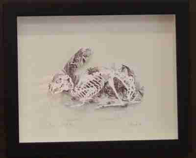 """Paper Cut"" Luxury Fine Art - Rabbit Anatomica - Alice in Wonderland (Framed)"