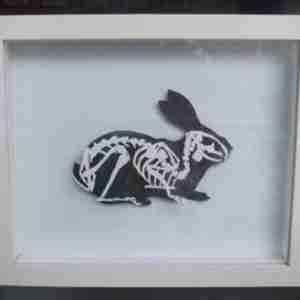 """Paper Cut"" Luxury Fine Art - Rabbit Anatomica Paper Art (Framed)"