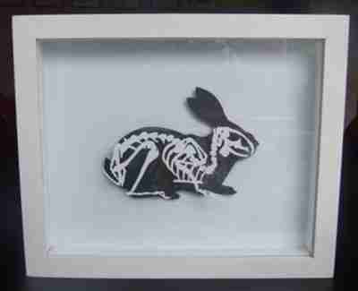 """Paper Cut"" Luxury Fine Art - Rabbit Anatomica Paper Art (Framed)"