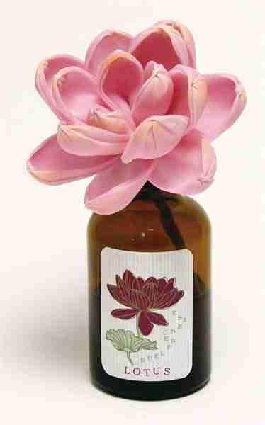 Sola Flower Fragrance Diffuser - Magnolia Scent by ArtLab